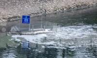 'Bảo bối' của Nhật làm sạch nước sông Tô Lịch được bảo vệ thế nào?