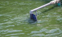 Tiếp tục xả nước hồ Tây vào sông Tô Lịch, 'bảo bối' Nhật chìm trong nước