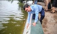 Dùng 'bê tông trường tồn', bờ hồ Hoàn Kiếm vẫn cong mềm mại
