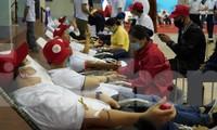 Tuổi trẻ ngành Than hiến máu cứu người