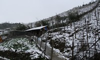 Núi rừng khu vực thác Bạc và đèo Ô Quy Hồ tuyết đã phủ trắng. Ảnh: Báo Lào Cai.