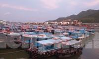 Hàng trăm tàu cá Khánh Hoà vào bờ neo đậu tránh bão số 5