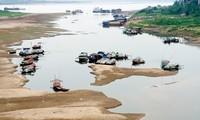 Nếu siêu dự án sông Hồng thành hiện thực liệu có còn những bãi bồi phù sa như thế này. Ảnh: Hồng Vĩnh.
