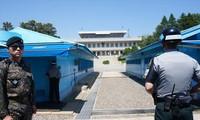 Khu phi quân sự giữa Triều Tiên và Hàn Quốc là nơi có đường phân định tạm thời chia cắt bán đảo Triều Tiên. Ảnh: Thu Loan.