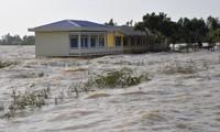 Người dân khu vực ĐBSCL đang chịu ảnh hưởng nặng nề do các đập thủy điện phía thượng nguồn.