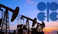 Dù không phải thành viên OPEC, Nga cũng bắt tay với tổ chức này để giảm sản lượng dầu mỏ lần đầu tiên trong 15 năm qua. Ảnh: PressTV