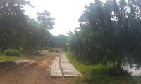 Khu đất được giới thiệu dự án Golden Lake Hòa Lạc (Sơn Tây, Hà Nội) chỉ là nơi đang trồng cây, nuôi cá. Ảnh: Ngọc Mai