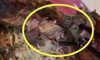 Chuỗi thực phẩm sạch Hà Nội đóng cửa vì sự cố giòi bò, LG dừng kinh doanh điện thoại