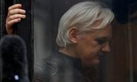 Không lâu sau khi Julian Assange bắt, cộng đồng quốc tế đã lên tiếng về vụ việc, trong đó Nga kêu gọi bảo vệ quyền của nhà sáng lập WikiLeaks