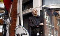Ông Julian Assange xuất hiện trong tòa Đại sứ quán Ecuador tại Anh