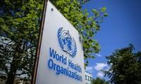 Mỹ hiện tại vẫn là quốc gia tài trợ nhiều nhất cho WHO. Ảnh: AFP.