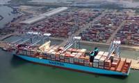 Tại cảng Cát Lái, những tháng vừa qua có lúc lượng container hàng hóa bị ùn ứ lớn. Ảnh: Ngô Bình