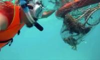 Anh Cao Mạnh Tuấn lặn biển vớt rác cứu các rặng san hô. (Ảnh chụp từ clip)