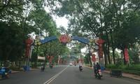 Đường phố Buôn Ma Thuột rợp bóng cây xanh hai bên đường