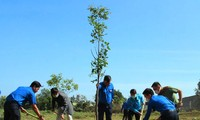 Các đại biểu trồng cây xanh
