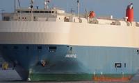 Tàu Sincerity Ace chở theo hàng nghìn chiếc xe Nissan trước khi gặp nạn trên Thái Bình Dương. Ảnh: Carscoops.