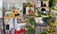 Sao Việt trang hoàng nhà cửa rực rỡ đào mai đón Tết