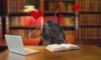 Đặt tên người yêu cũ cho gián dịp Valentine để 'trút giận'