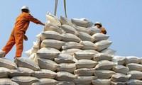 """Gạo được mùa, được giá mà không xuất được khiến DN như """"ngồi trên đống lửa"""""""