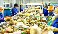 Dây chuyền phân loại xử lý rác được đưa vào vận hành thử