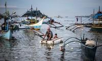 Ngư dân Philippines trên vịnh Subic. Ảnh: NYT