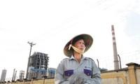 Nhà máy đạm Ninh Bình một trong 12 dự án thua lỗ ngành Công Thương. Ảnh: Phạm tuyên