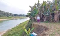 Vị trí mộ của bà Trần Thị Tròn phải dời đi khẩn cấp do đất đai bị tàu cát hút sạt lở