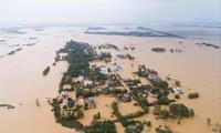 Cả Quảng Bình bị nước lũ nhấn chìm