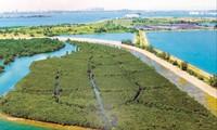 Đảo rác nổi Semakau trở thành khu bảo tồn thiên nhiên và du lịch