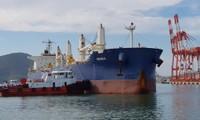 Tàu neo đậu tại cảng Quy Nhơn