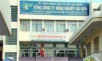 Liên quan sai phạm của Sagri, giám đốc và kế toán trưởng của Cty Lữ hành Hòa Bình Quốc tế và Cty du lịch Thanh niên xung phong bị bắt