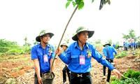 Đại hội có nhiều hoạt động an sinh xã hội, hướng về cộng đồng. (Trong ảnh, các đại biểu Đại hội thanh niên làm theo lời Bác lần thứ V tham gia trồng cây thực hiện công trình thanh niên) Ảnh: Xuân Tùng