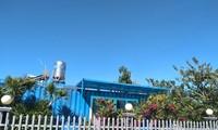 Cty Tân Thành cho lắp đặt nhiều container trái phép trên khu đất quốc phòng Ảnh: Lữ Hồ