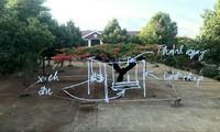 Ý tưởng làm giàn bảo vệ cây kiêm chỗ ngồi mát của nhà nhiếp ảnh Đặng Hào