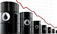 Giá dầu lao dốc, OPEC đang bị chia rẽ