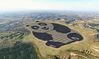 Nhà máy năng lượng Mặt Trời hình gấu trúc được xây dựng ở Đại Đồng, tỉnh Sơn Tây, Trung Quốc. Ảnh: Panda Green Energy.