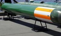 Fizik-2 trang bị đầu dò nhiệt, khác các loại ngư lôi thông thường. Ảnh: Bastion-Karpenko.