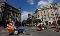 Nông dân lái máy kéo trên đường phố Barcelona ủng hộ Catalonia tách riêng. Ảnh: Reuters