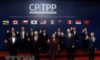 Bộ trưởng Bộ Công thương Trần Tuấn Anh (thứ nhất, phải, hàng sau) cùng đại diện 10 nước tham gia lễ ký Hiệp định CPTPP. (Nguồn: AFP/ TTXVN)