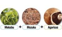 Món quà tuyệt vời từ tảo nâu Okinawa Mozuku đối với sức khỏe con người