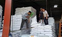 Tổng cục Hải quan lên tiếng việc mở tờ khai hải quan xuất khẩu gạo nửa đêm