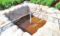 Ao chứa nước để tưới hoa của nông dân Bến Tre