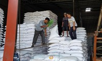 Nhiều DN xuất khẩu gạo gặp khó với việc hệ thống mở tờ khai hải quan lúc nửa đêm - Ảnh: Phương Chăm