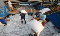Doanh nghiệp kinh doanh gạo gặp khó khăn khi xuất khẩu ra thế giớiẢnh: CK