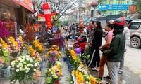 Hoa lạ, hoa giả được săn đón ở Thanh Hóa