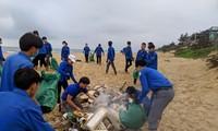 Các Đoàn viên Thanh niên thu gom rác tại các bãi biển.