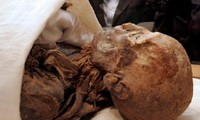 Displaying mummies for 3,000 years, sparking fear of unleashing the curse of the Pharaohs