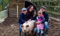 Chú lợn Milton và gia đình cô chủ Sarah.