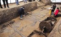 Xe ủi vô tình làm lộ ngôi mộ có 600 chiến mã bị chém khiến nhiều người sửng sốt.