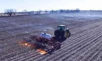 Lạ kỳ, nông dân Mỹ diệt cỏ dại bằng cách... phun lửa